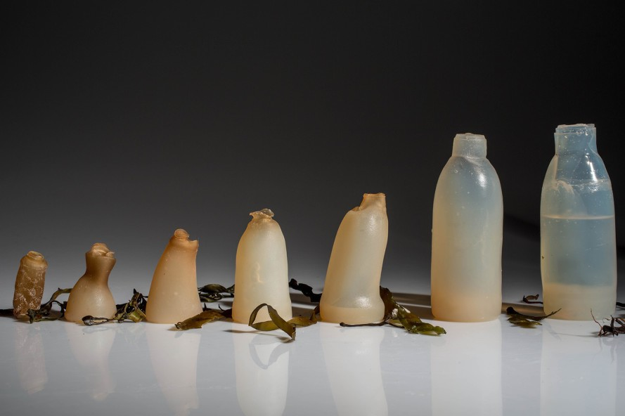algae-water-bottle-ari-jc3b3nsson-889x592